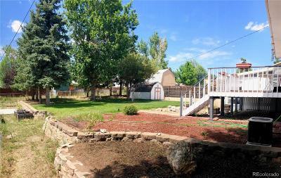 Castle Rock CO Single Family Home Active: $325,000