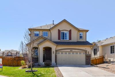 Meadows, The Meadows Single Family Home Under Contract: 3075 Open Sky Way