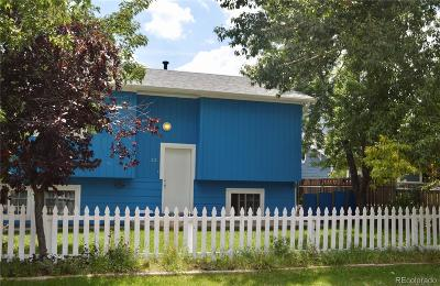 Palmer Lake Single Family Home Active: 33 Lower Glenway