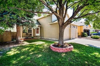Castle Rock Single Family Home Under Contract: 3155 West Sugarbowl Court