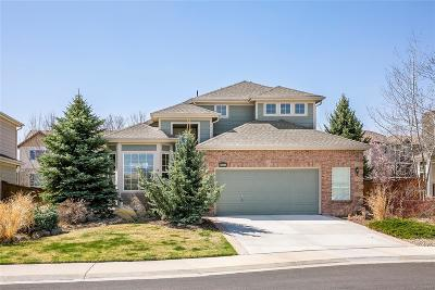 Parker Single Family Home Active: 16845 Trail View Circle