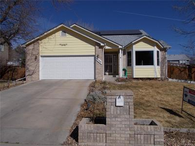 Single Family Home Active: 9039 West 65th Place