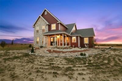 Elbert County Single Family Home Active: 45225 Wolf Creek Drive