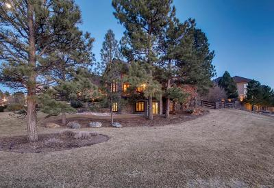 Parker Single Family Home Under Contract: 9052 Scenic Pine Drive