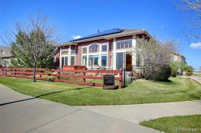 Arvada Single Family Home Active: 6431 Umber Circle
