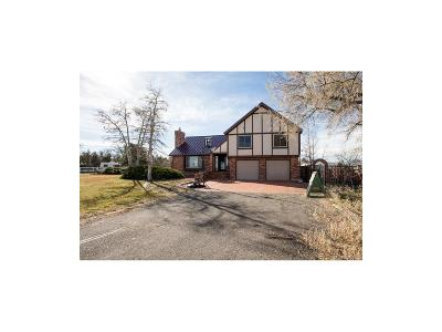Johnstown Single Family Home Active: 20287 Northmoor Drive
