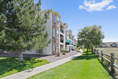 Littleton Condo/Townhouse Active: 12338 West Dorado Place #201