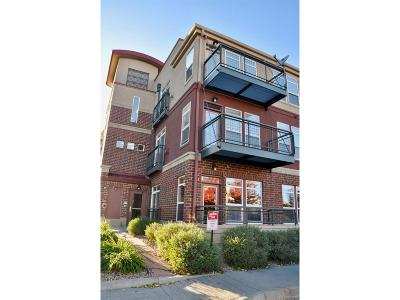 Lone Tree Condo/Townhouse Under Contract: 10176 Park Meadows Drive #2119