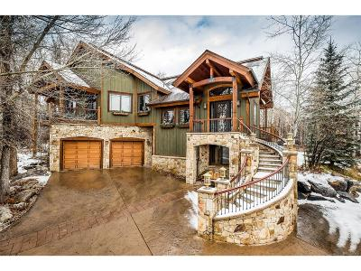 Steamboat Springs Single Family Home Active: 687 Meadowbrook Circle