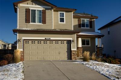 Monument Single Family Home Active: 1339 Yellow Granite Way