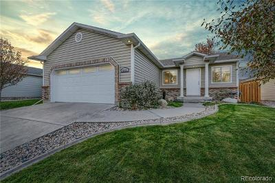Fort Collins Single Family Home Under Contract: 4009 Berwick Lane