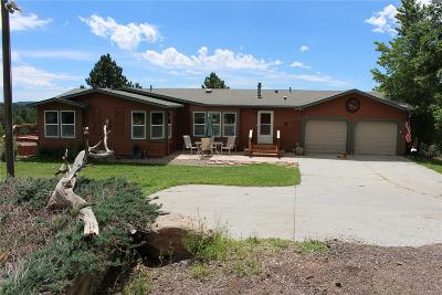Elbert County Single Family Home Active: 22880 Eagle Drive