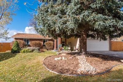 Boulder Single Family Home Active: 4665 Kirkwood Court