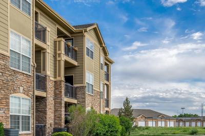 Castle Pines, Castle Rock, Littleton, Lone Tree, Parker Condo/Townhouse Under Contract: 9227 Rolling Way #204