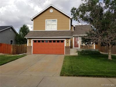 Denver Single Family Home Active: 5214 Fairplay Street