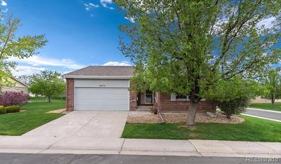 Highlands Ranch Single Family Home Active: 8979 Greenspointe Lane