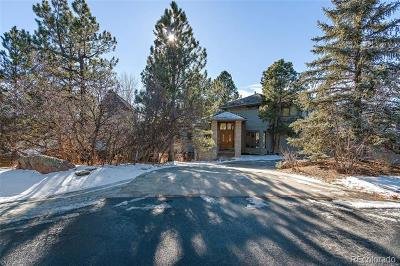 Castle Rock Single Family Home Active: 164 Glengarry Place