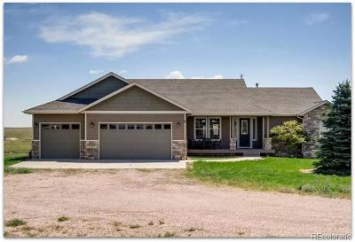 Kiowa CO Single Family Home Active: $675,000