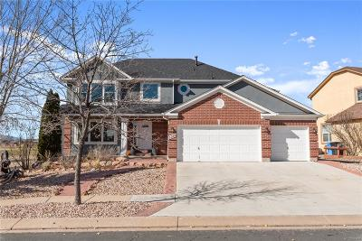 Single Family Home Active: 3360 Pony Tracks Drive