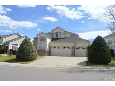 Single Family Home Sold: 9642 Indian Wells Drive
