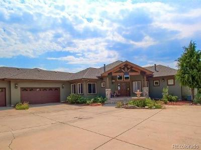 Castle Rock Single Family Home Active: 4260 Old Gate Road