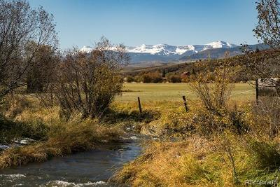 Oak Creek, Phippsburg, Yampa, Toponas Residential Lots & Land Active: 18195 State Hwy 131 Highway