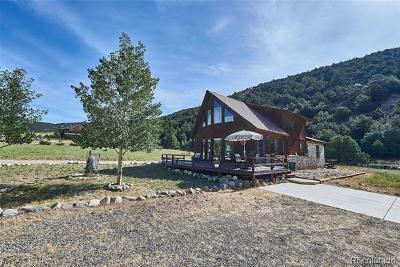 Salida Single Family Home Active: 8420 County Road 240e