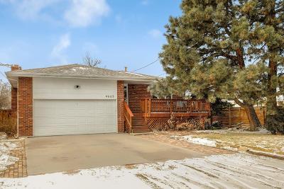 Denver Single Family Home Active: 4665 Newton Street