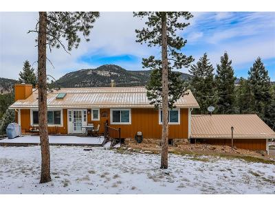 Conifer Single Family Home Under Contract: 24877 Red Cloud Drive