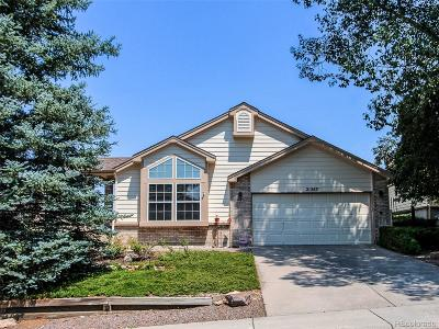 Parker CO Single Family Home Active: $450,000