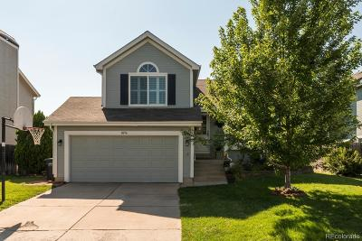 Parker Single Family Home Active: 8656 Wildrye Circle