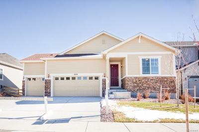 Aurora Single Family Home Active: 6638 South Catawba Way