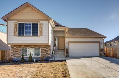 Johnstown Single Family Home Active: 471 Grange Lane