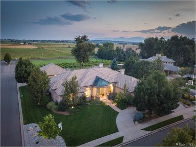Longmont Single Family Home Active: 1431 Onyx Circle