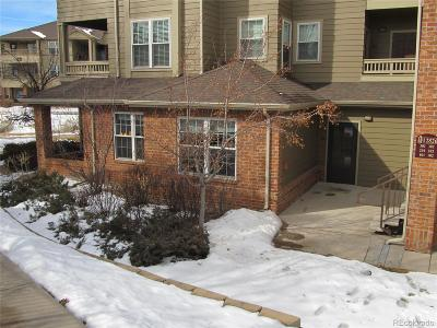 Parker Condo/Townhouse Under Contract: 12826 Ironstone Way #101