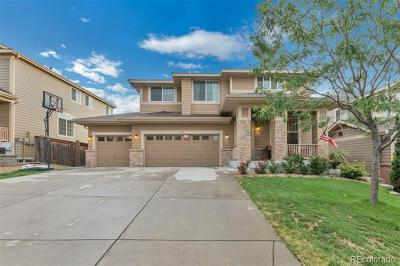 Parker Single Family Home Active: 11735 South Rock Willow Way