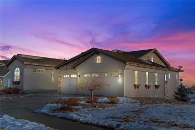 Boulder County Single Family Home Sold: 297 Meadow View Pkwy Parkway