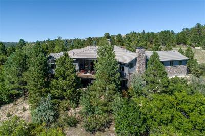 Castle Rock Single Family Home Active: 771 International Isle Drive