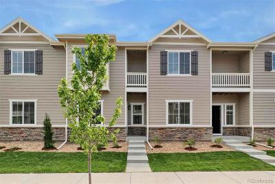 Longmont Condo/Townhouse Under Contract: 1580 Sepia Avenue