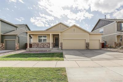 Castle Rock Single Family Home Active: 2247 Shadow Rider Circle