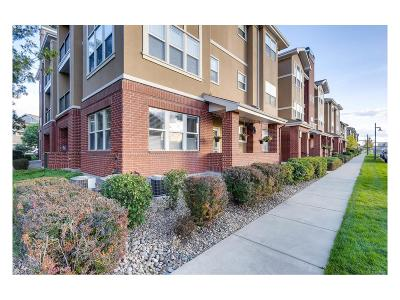 Englewood Condo/Townhouse Under Contract: 8467 Canyon Rim Circle #308