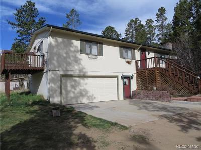 Allenspark Single Family Home Active: 2531 Big Owl Road