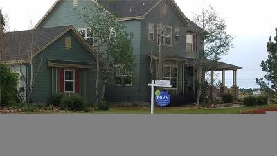 Castle Rock Single Family Home Active: 5328 Danvers Court