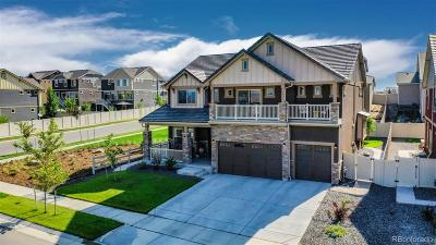 Weld County Single Family Home Active: 303 Painted Horse Way