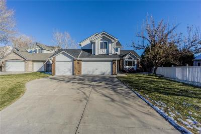 Greeley Single Family Home Active: 842 51st Avenue