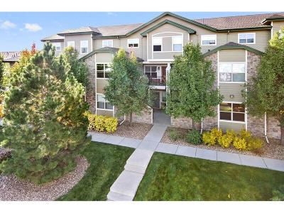 Denver Condo/Townhouse Active: 5800 Tower Road #108