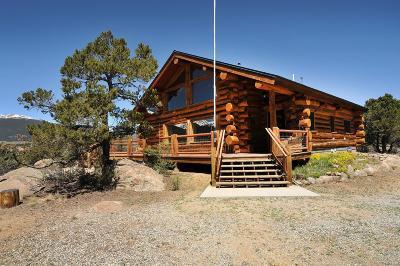 Buena Vista Single Family Home Active: 32899 County Road 371