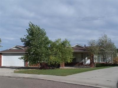 Kiowa Single Family Home Active: 456 Blackfoot Court