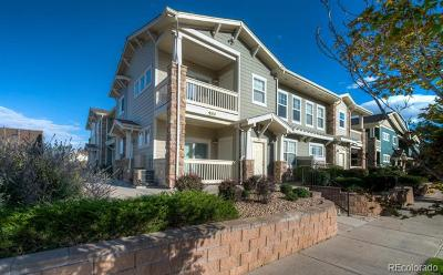 Parker Condo/Townhouse Under Contract: 9551 Pearl Circle #204