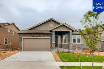 Aurora Single Family Home Active: 8017 South Grand Baker Way